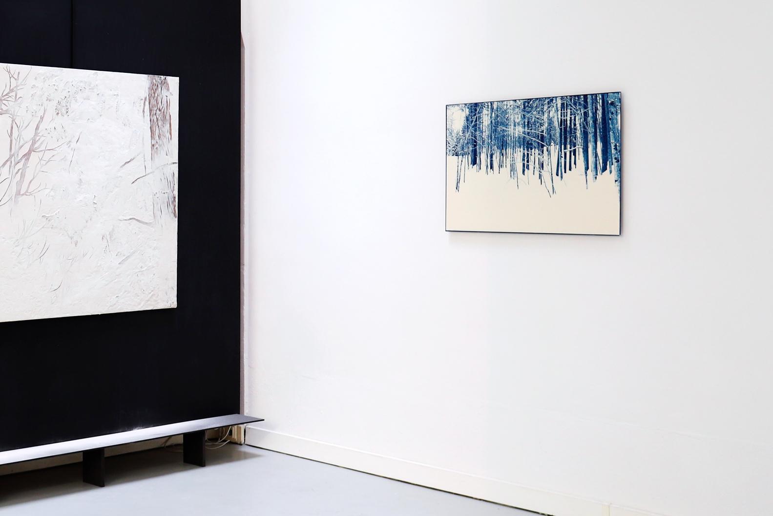 coupe, vue d'exposition, 2019, cyanotype, 61x81 cm